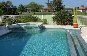 Backyard swimming pool and pool fence